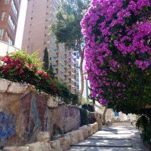 Oferta Nochevieja en Apartementos Levante Club 2*
